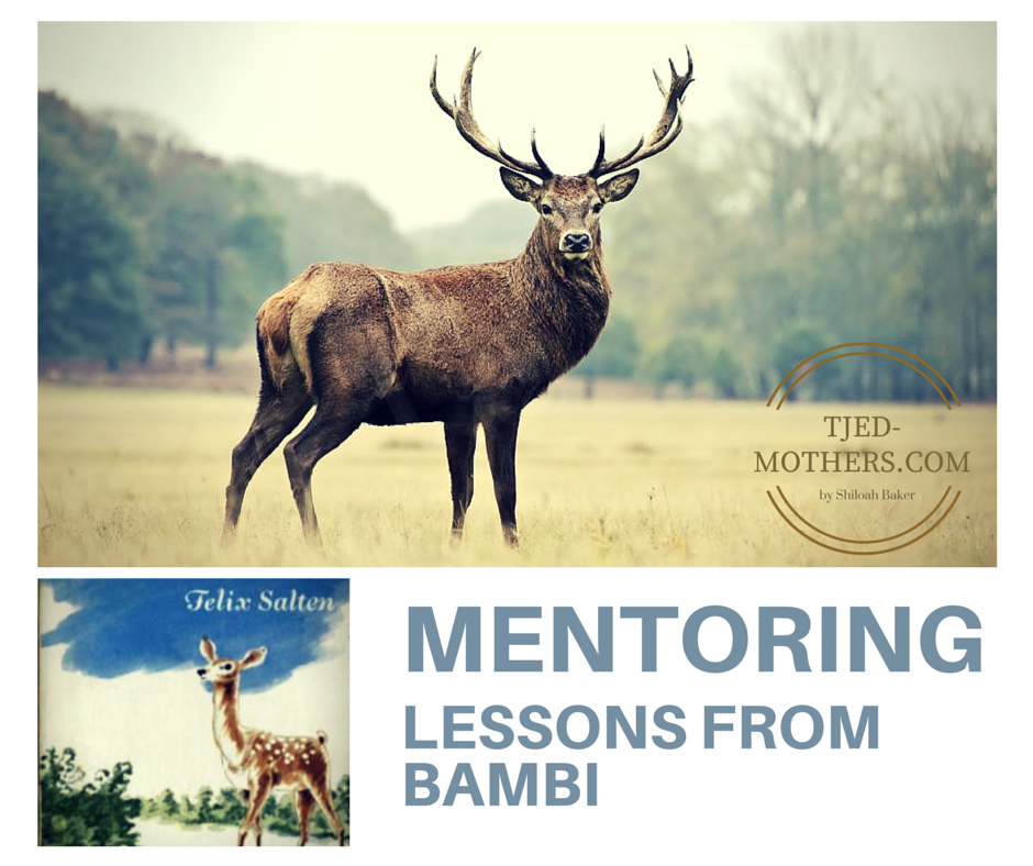 Mentoring Lessons from Bambi