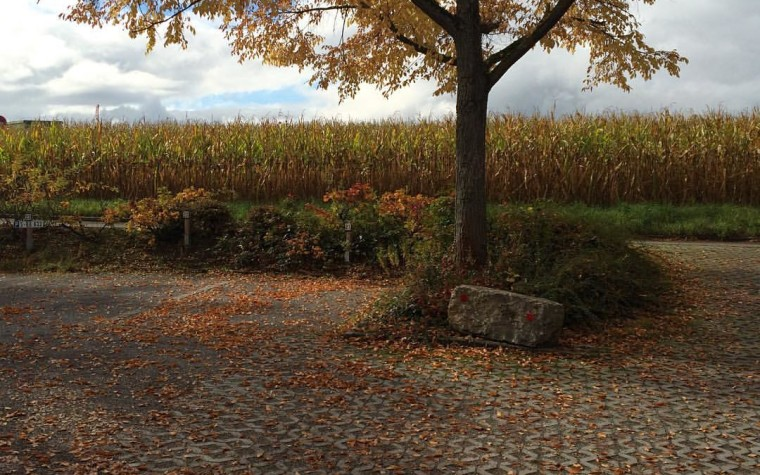 Fall in Birkach, Stuttgart, Germany