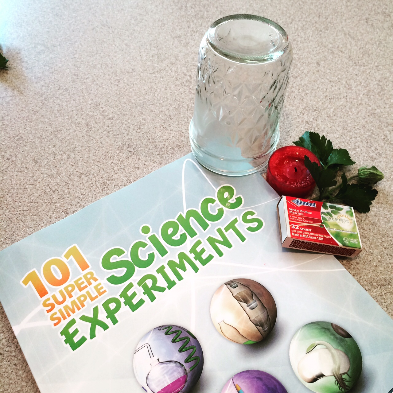 Real Science 4 Kids is Real Science!